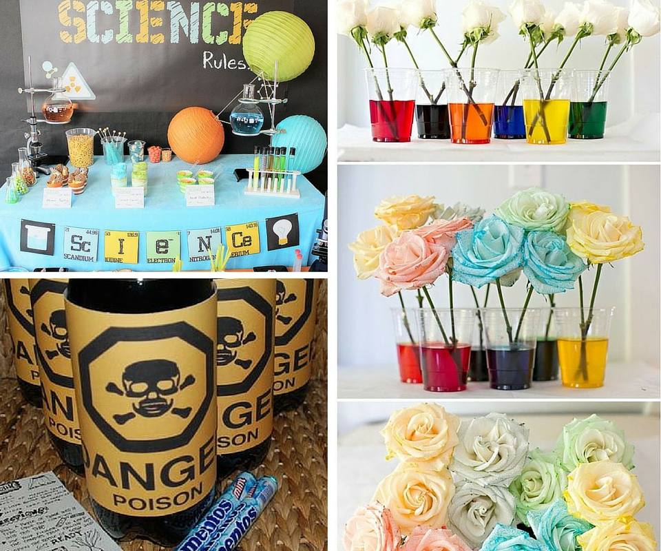 Science birthday party ideas kids party ideas at birthday in a box - Party decorations ideas ...