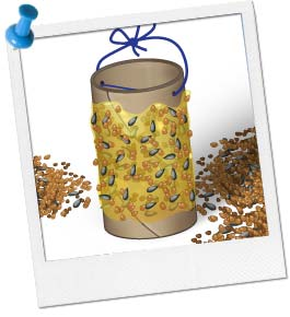 Bird Feeder Craft