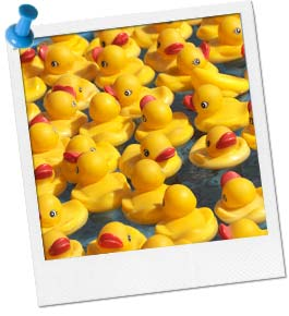 Rubber Ducky Pond
